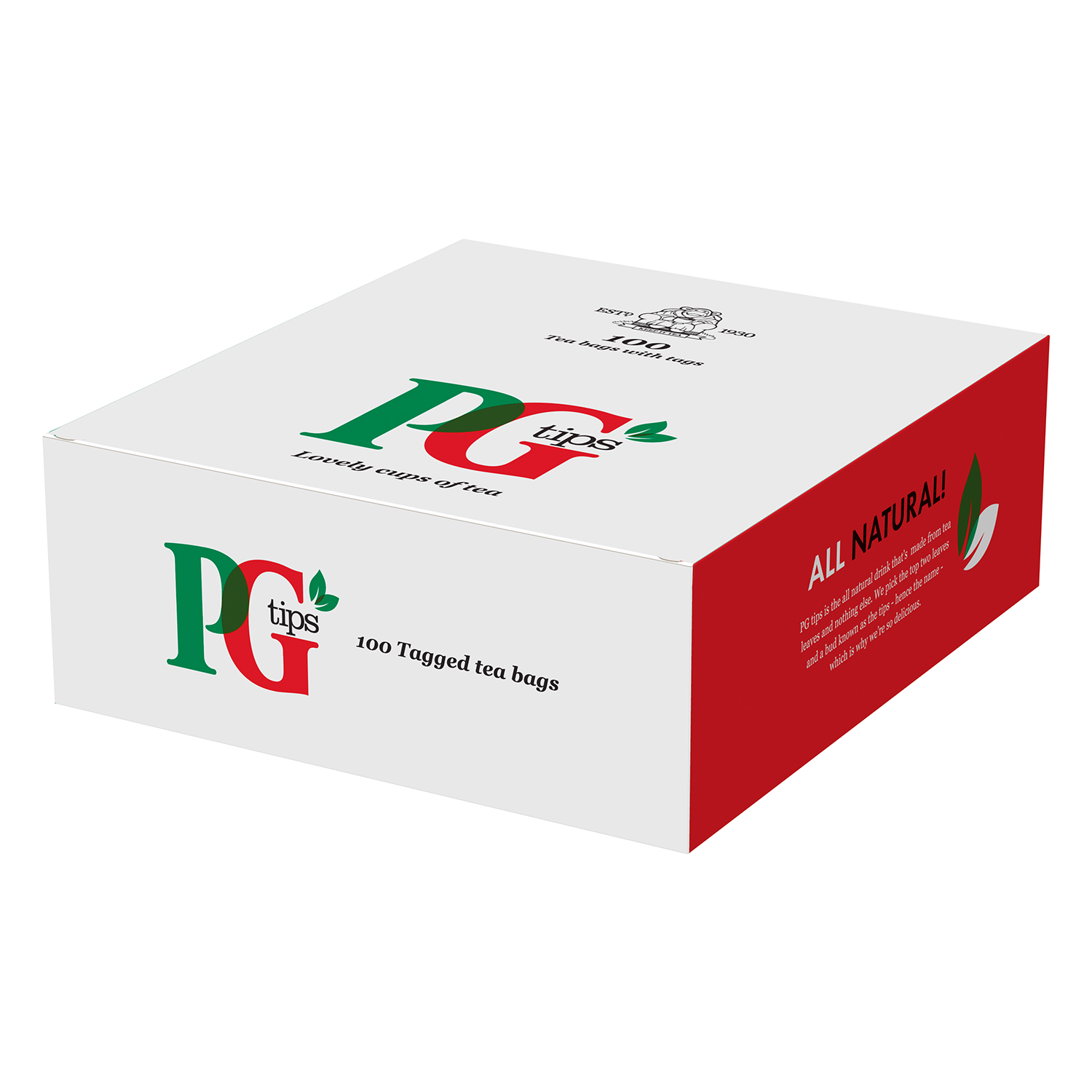 PG Tips String & Tagged 100's (12 Units)